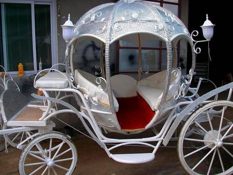 Indian Wedding Horse Carriage Wedding Horse Carriage Pumpkin