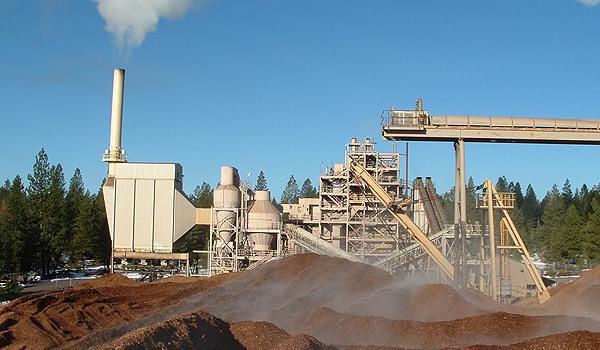 Biomass Power Parameters of Runh Power 150